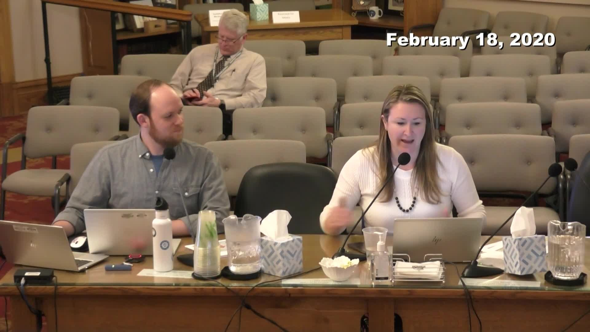 City Council Work Session - 02/18/2020